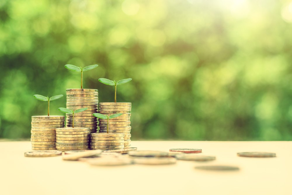 Coins sprouting plants meaning money fostering sustainability